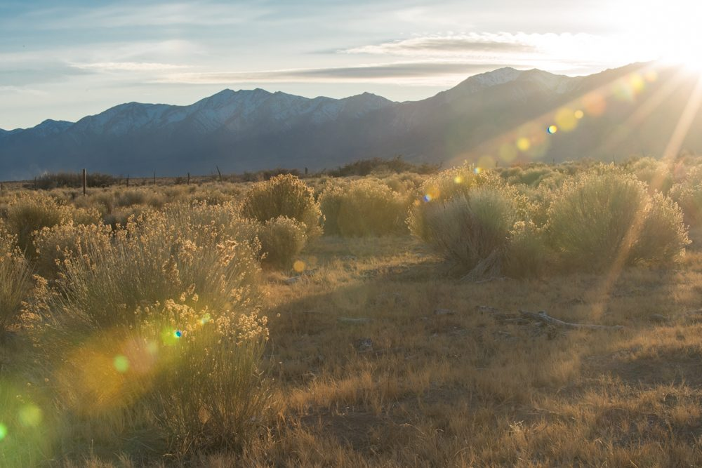 Big Smokey Valley Nevada, Great Basin Seed, What is the Great Basin?